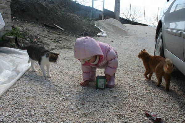vera-gatti